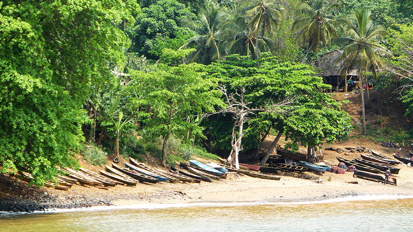 São Tomé: fine African cocoa