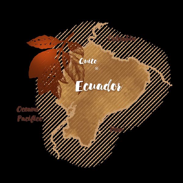 Ecuador Nacional Arriba: fine, aromatic cocoa