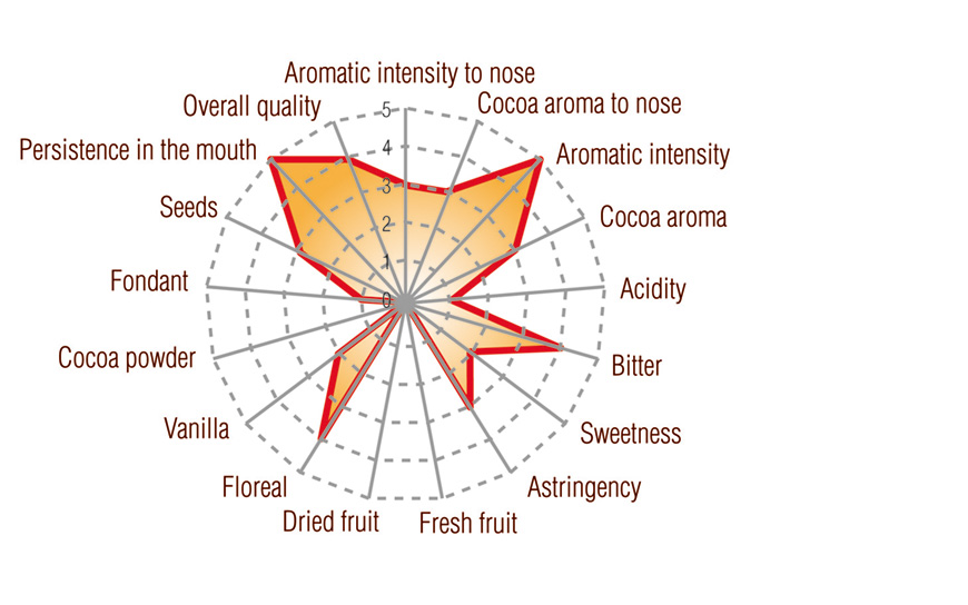 Dark Ecuador Single Origin nacional Arriba Full taste profile