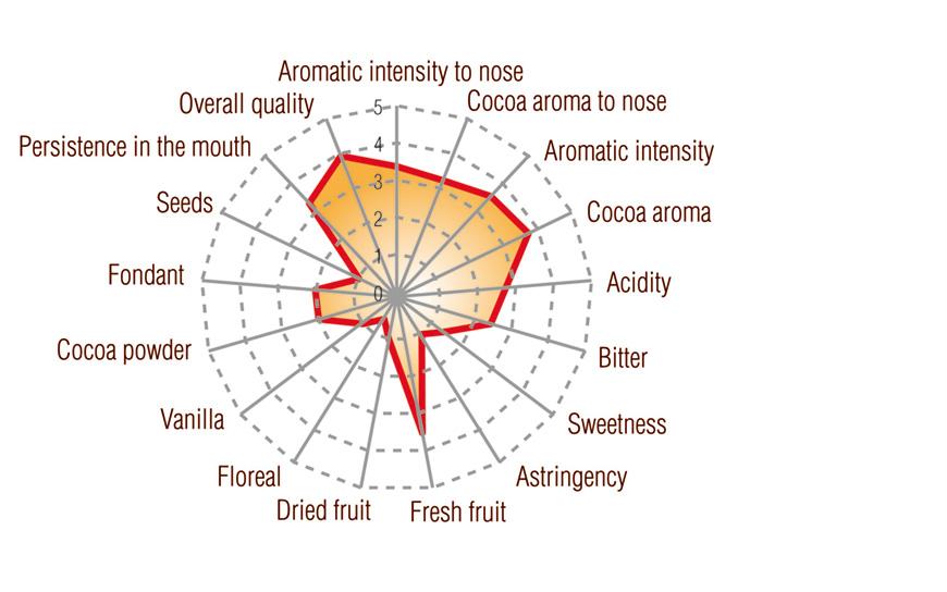 Dark Grand Cru Pachiza Peru Origin Full taste profile