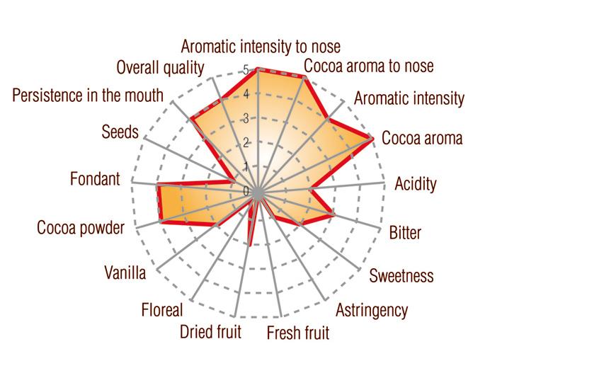 Dark São Tomé Single Origin Full taste profile