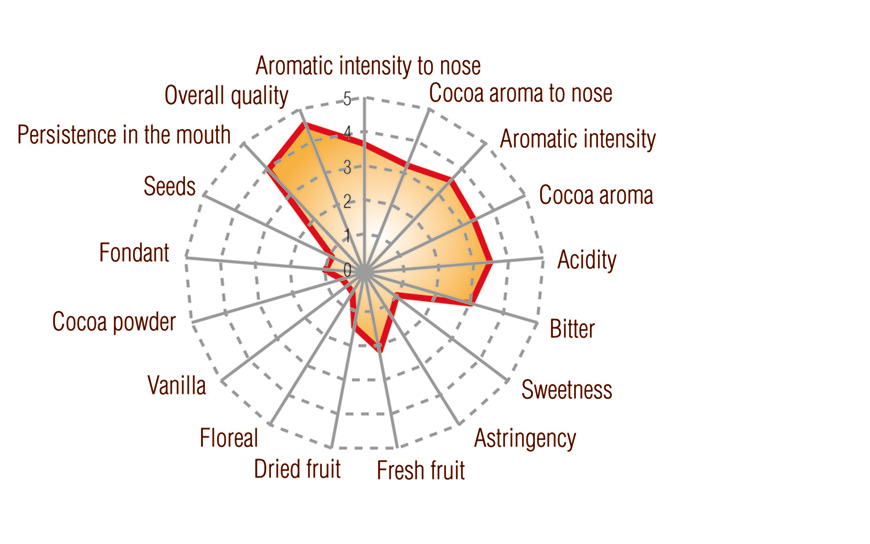 Grand Cru Cocoa Paste Los Bejucos Dominican Origin Full taste profile