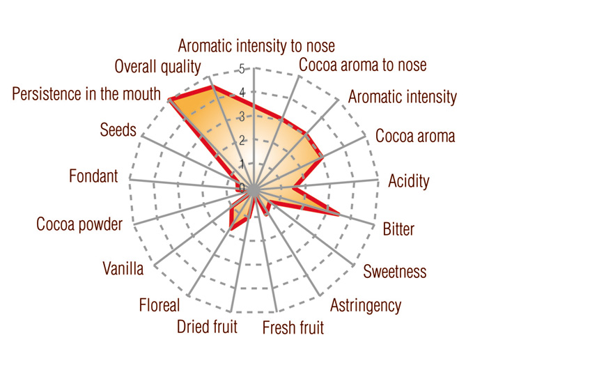Nacional Arriba Cocoa Paste Single-origin Ecuador Full taste profile